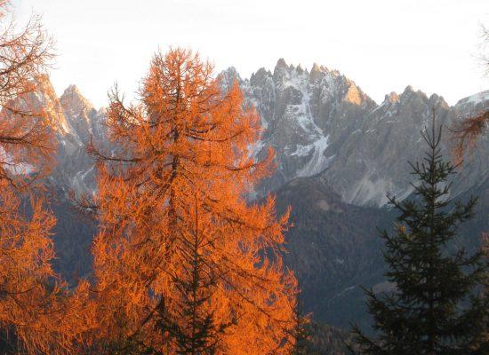 Herbststimmung/atmosfera autunnale